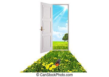 Opened white door
