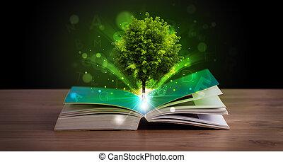 opengeslagen boek, met, magisch, groen boom, en, stralen van licht