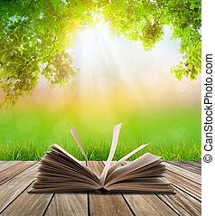 opengeslagen boek, op, houtenvloer, met, groen gras, en,...