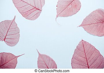 openwork pink autumn leaves Frame on a blue background