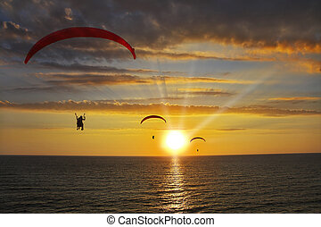 Operated parachutes above the sea on a sunset