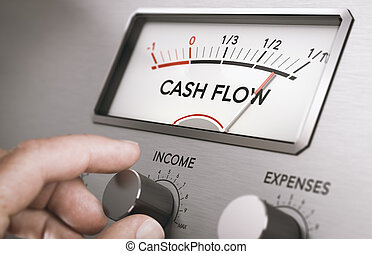 Operating cash flow management. Manage business liquidities...