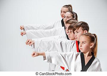 opleiding, geitjes, grit, kunsten, karate, krijgshaftig, ...
