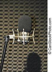 opname, microfoon, muziek
