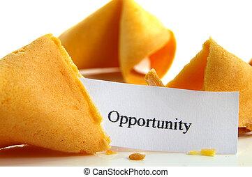 oportunidad, galleta china con un mensaje sobre la suerte, primer plano, blanco