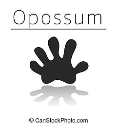 Opossum animal track with name and reflection on white ...