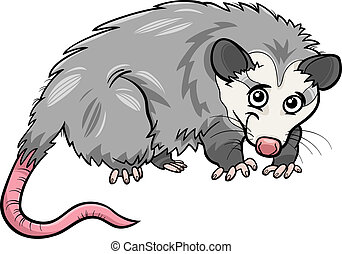 opossum, dessin animé, illustration, animal
