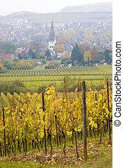 Oppenheim, Rheingau, Germany