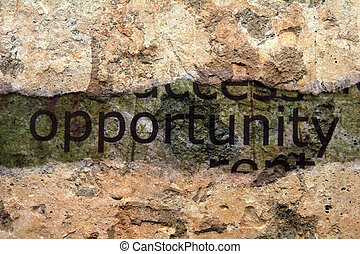Opportunity concept