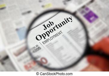 """opportunity"""", """"job, tekst, op, geclassificeerd, vergrootglas..."""