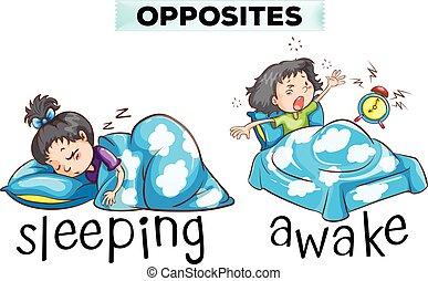 opposé, wordcard, dormir, éveillé, mot