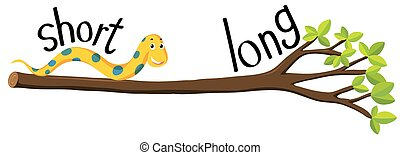 Opposite adjectives with short and long illustration