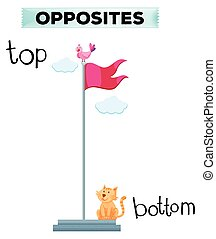 Opposite word for top and bottom illustration