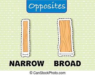 Opposite words for narrow and broad illustration