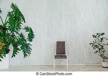 opróżniać, rośliny, pokój, wewnętrzny, krzesło, okna