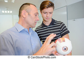 Optician with young man holding model of an eye