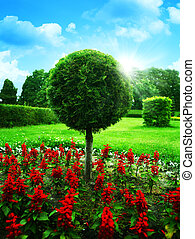 Optimistic garden. Abstract natural backgrounds under blue skies
