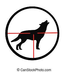 optique, loup, vue