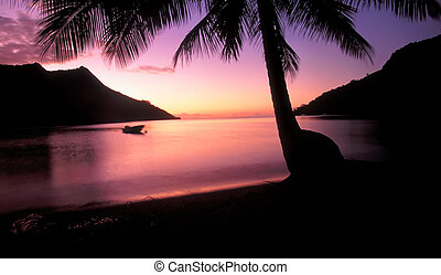 Opunohu Bay Sunset Moorea Tahiti