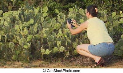 opuntia, femme, smartphone, images, sri, lanka., touriste, cactus, prendre
