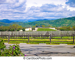 Opus One vineyard in Sonoma California
