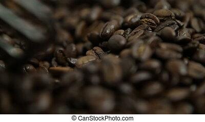 opwinding, koffie bonen, met, peddel