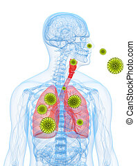 opylit, alergie, ilustrace