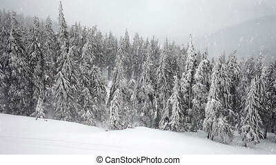 orage, hiver, tempête neige, neige