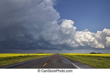 orage, prairie, nuages, canada