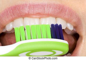oral hygiene - correct use of the toothbrush