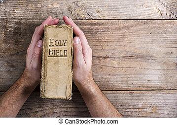 orando, bíblia, mãos