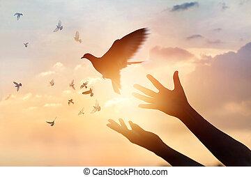 orando, mulher, conceito, natureza, livre, fundo, pôr do sol, desfrutando, pássaro, esperança
