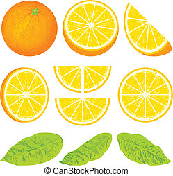 Orange and slices at different angles, also three versions ...