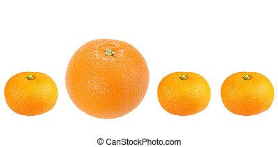 Orange and tangerine in row