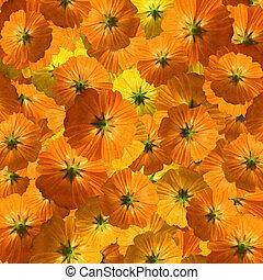 Orange and yellow flower flurry background