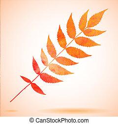 orange, aquarelle, peint, feuille