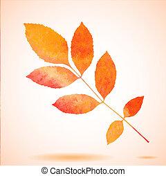 orange, aquarelle, peint, vecteur
