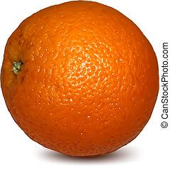 orange, arrière-plan., blanc, vecteur, isolé