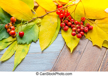 Orange ashberry and fallen leaves on a wooden background. Happy Thanksgiving and Harvest Day. Frame of autumn yellow, orange and fresh rowan berries. Hello autumn. Fall season card. postcard. Copy space
