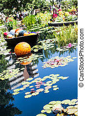 Orange Ball and Lilly Pads
