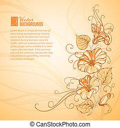 Orange Bindweed - Bindweed on a orange background with empty...