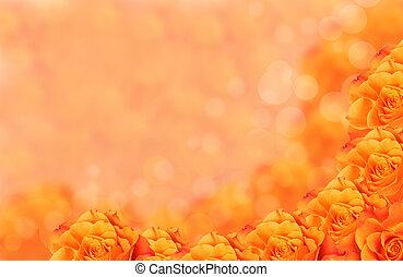 orange, bokeh, fleur