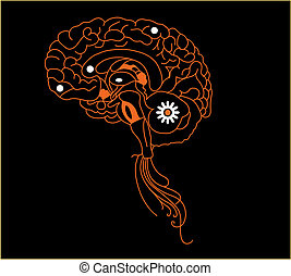 Orange brain