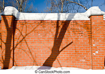 Orange brick wall in spring park