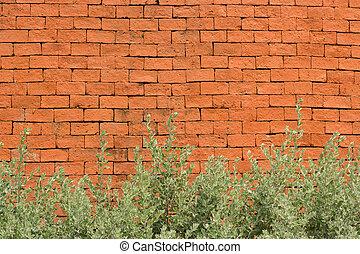 orange brick wall with plant.