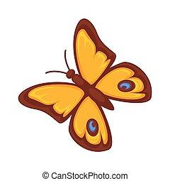Orange butterfly isolated on white background. Morpho rhetenor vector illustration