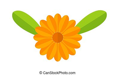 Orange Calendula flower with leaves symbol. Vector illustration.