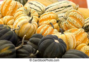 Orange carnival squash - Piles of squash at the market,...