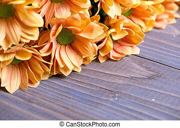 orange chrysanthemums on a wooden background