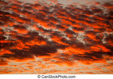 Orange Cirrocumulus clouds - Early morning dusk before ...